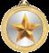 GOLD-STAR-MEDAL100434-1077
